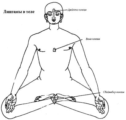 лингамы в теле
