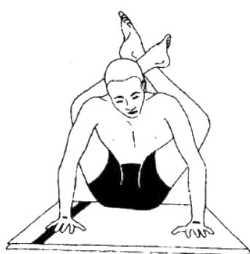 Дви-пада-ширшасана (поза – две ноги за головой)