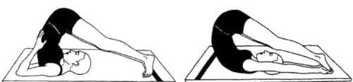 Гималайская йога и здоровье Халасана