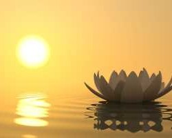 Медитация для начинающих фото300