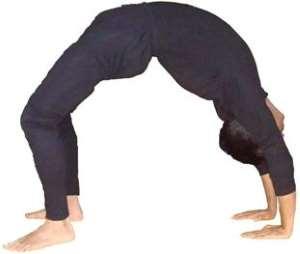 Прогибы, наклоны и скрутки в практике йоги