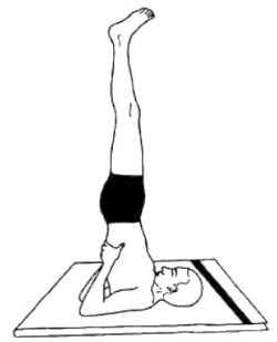 Гималайская йога и здоровье Сарвангасана